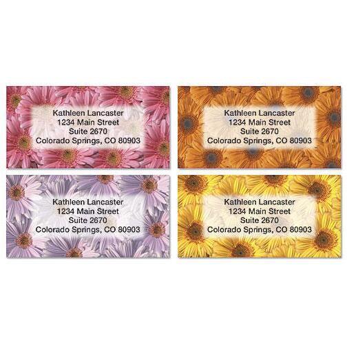 Daisy Delight Border Return Address Labels  (4 Designs)