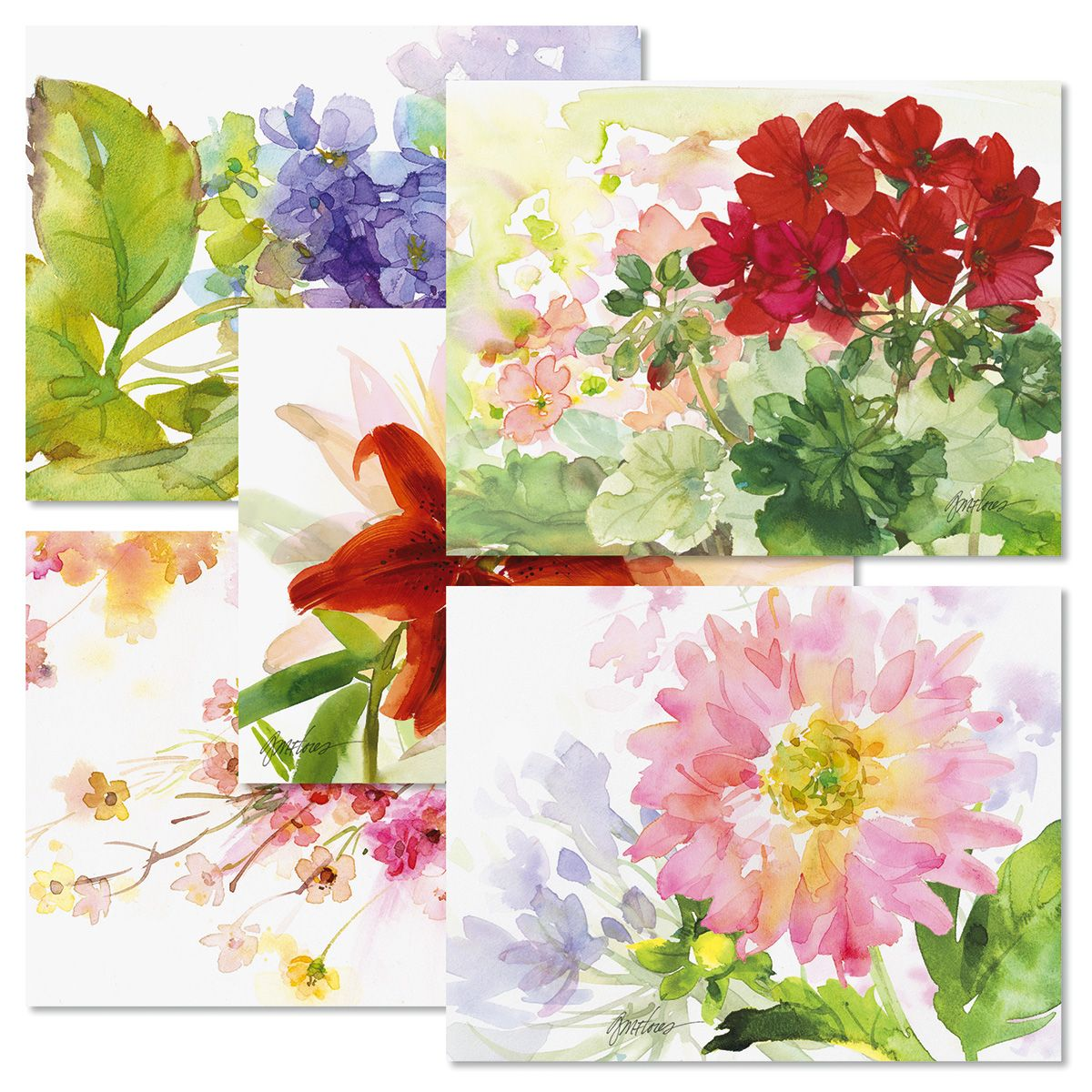 Watercolor Garden Note Card Value Pack - Buy 1 Get 1 Free