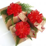 Red Organza Pull Bows