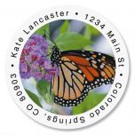 Monarch Butterfly Round Address Labels