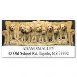 Family Portrait Deluxe Address Labels