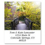 Bridge in Forest  Select Address Labels