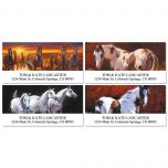Handsome Horses Deluxe Address Labels  (4 Designs)