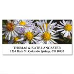American Wildflowers Deluxe Address Labels  (24 Designs)
