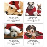 Christmas Dogs Select Address Labels  (4 Designs)