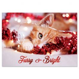 Holiday Kitten Christmas Cards - Personalized