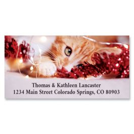 Holiday Kitten Deluxe Return Address Labels