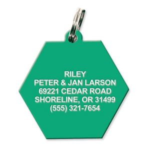 Hexagon Plastic Personalized Pet Tag