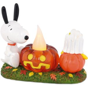 Snoopy's Pumpkin Surprise