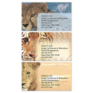 Big Cats Business Cards  (3 Designs)