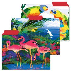 Tropics File Folders  (3 Designs)