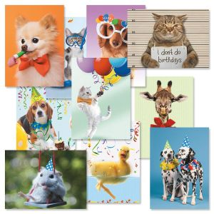 Picture This™ Birthday Greeting Cards Value Pack