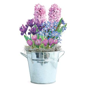 Shades of Purple Bulb Garden Gift BucketSold Out