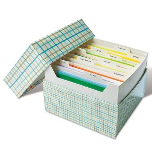 Greeting Card Organizer Box and Refills Stripes