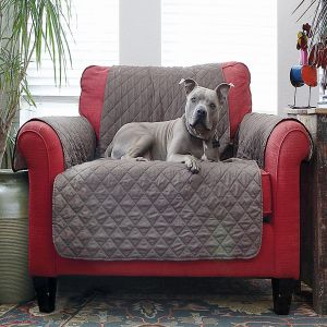 Chair Protector