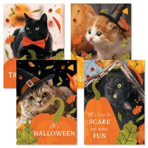 Halloween Cats Cards