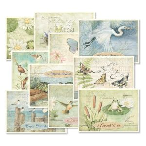 Nature Sanctuary Birthday Value Pack