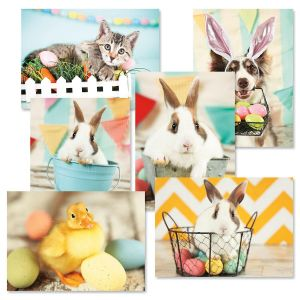 Easter Snapshot Cards