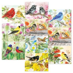 Bird Lovers Note Card Value Pack