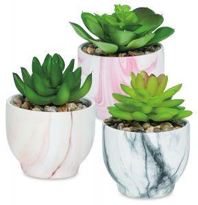 Marbleized Faux Succulent