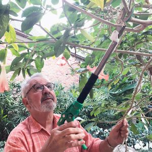 Bob Vila™ Telescoping Pruner