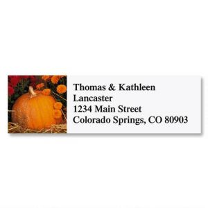Pumpkins And Mums Address Labels