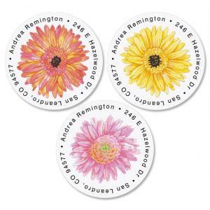 Gerbera Daisy Round Address Labels  (3 Designs)