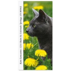 Dandy Cat  Oversized Address Labels