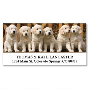 Gang of Pups Deluxe Address Labels