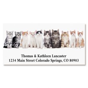 Cute Cats Deluxe Return Address Labels