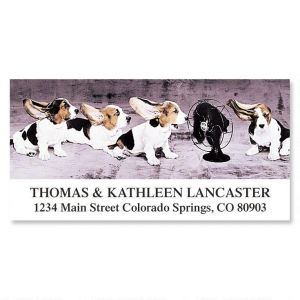 Cool Bassets Deluxe Address Labels
