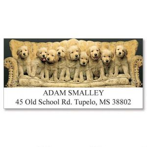 Family Portrait Deluxe Address Labels
