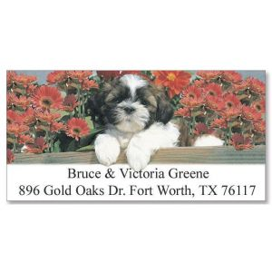 Shih Tzu  Deluxe Address Labels