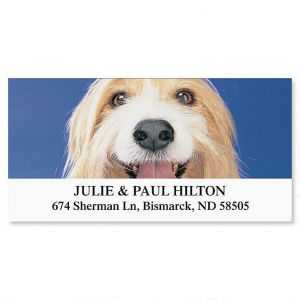 I Love My Shaggy Mutt Deluxe Address Labels