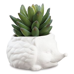 Prickles the Hedgehog Planter