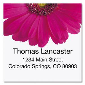 Pink Gerber Large Square Return Address Label