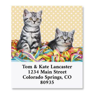 Birthday Cats Select Return Address Labels