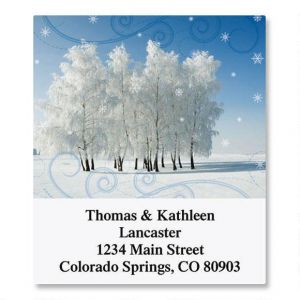 Cold Winter Day Select Address Labels