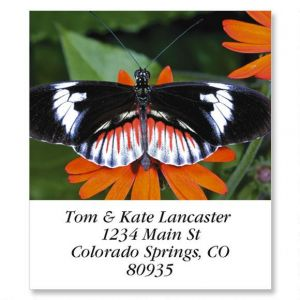 Longwing Butterfly Select Address Labels