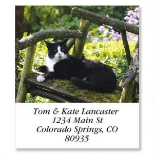 Black & White Cat in Chair Select Address Labels