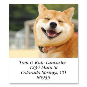 So Fine  Select Address Labels
