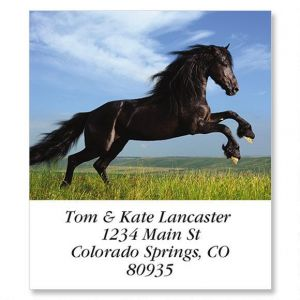 Black Beauty Select Address Labels