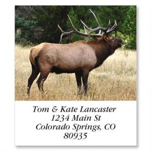 Bugling Elk Select Address Labels