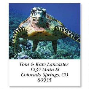Sea Turtle Select Address Labels