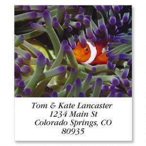 Clown Fish Select Address Labels