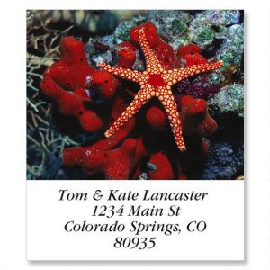 Marble Star Select Address Labels