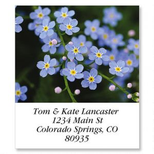 Meadow Blue Select Address Labels