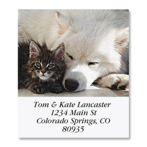 Friendship Select Address Labels