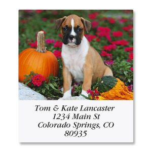 Boxer Pup Select Address Labels