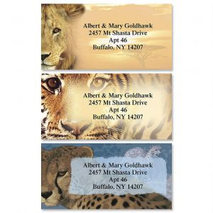 Big Cats Border Address Labels  (3 Designs)